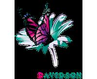 Davidson-transparent